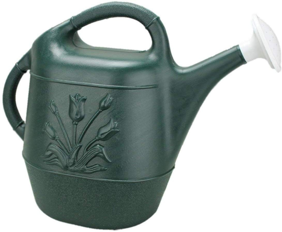 2 Gallon Watering Can - Hunter Green (1 Count) (Pkg/1)