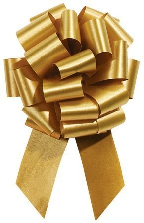 8 Inch Pull String Bows with 20 Loops (2 & 1/2 Inch Ribbon) (10 Count) (Pkg/1)