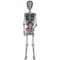 Day of the Dead Jointed Skeleton Cutout Decoration 60 Inch (1 Count) (Pkg/1)